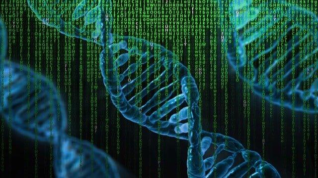 ¿Pruebas de ADN en los recién nacido detectan enfermedades?