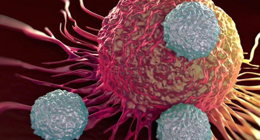 Investigadores españoles descifran mutaciones presentes en distintos tipos de cáncer